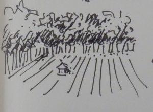 Geisterhäuschen im Feld ©Angelika Hermichen